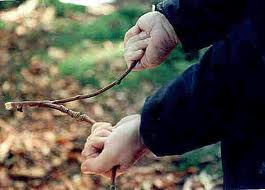 Post image for Dowsing Rod