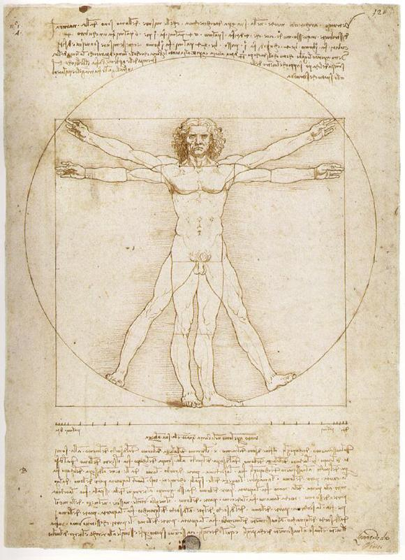 bd enigma vitruvian man by leonardo da vinci. Black Bedroom Furniture Sets. Home Design Ideas