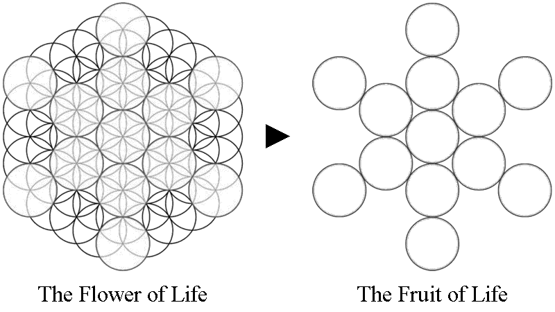 The Flower Of Life World Mysteries Blog