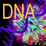 'Junk' DNA: An Interdimensional Doorway to Transformation?