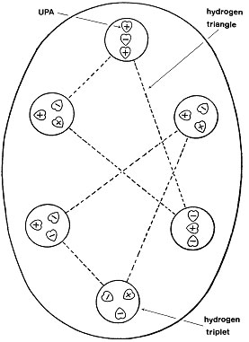 Micro Psi And String Theory How Occultists Beat Physicists To The