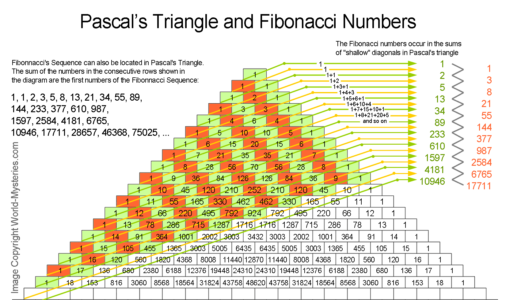 Discovery of the Fibonacci Sequence