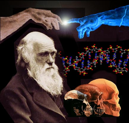 Post image for Science vs Religion – Evolutionism vs Creationism