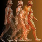 The First Generation of Homo Sapiens