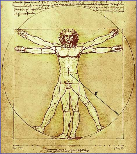 vitruvian man by leonardo da vinci world mysteries blog. Black Bedroom Furniture Sets. Home Design Ideas
