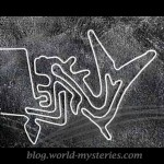 Puzzling Feature of Nazca Glyphs