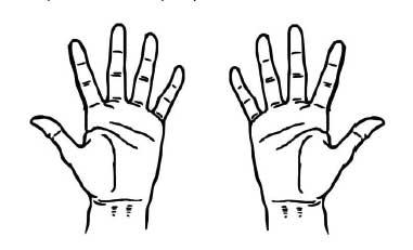 ten_fingers