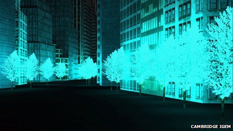 plant_street_lights