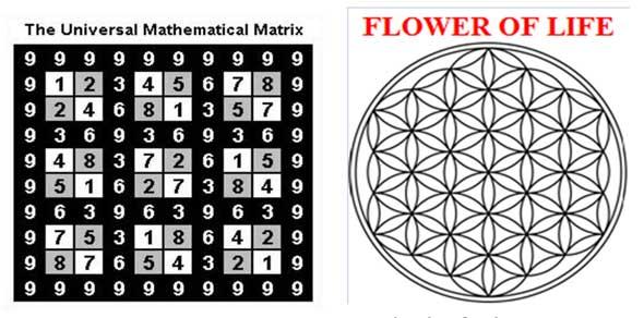 FlowrofLife_univ_matrix