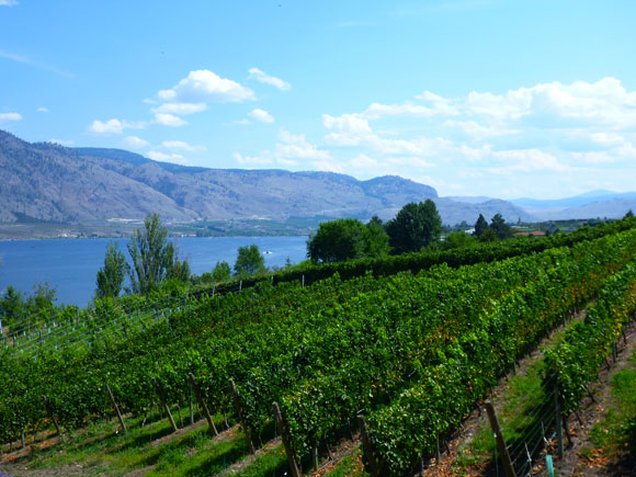 bc_wineries1