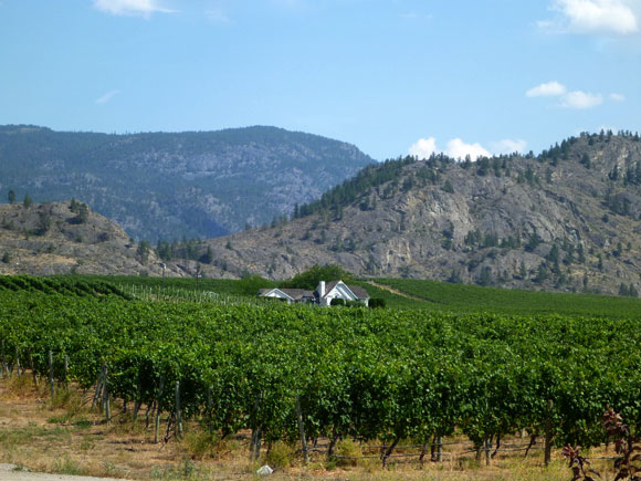 bc_wineries2