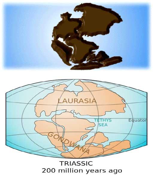 Euroasia_Gondwana