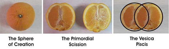 Pi2_scission