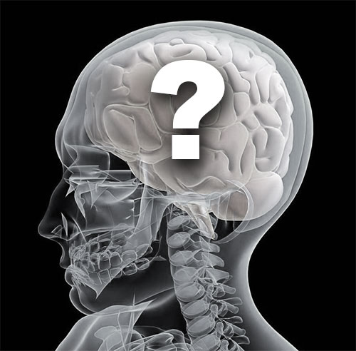 Post image for Mystery of the Brain