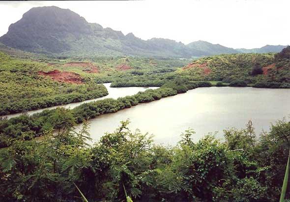 menehune-kauai