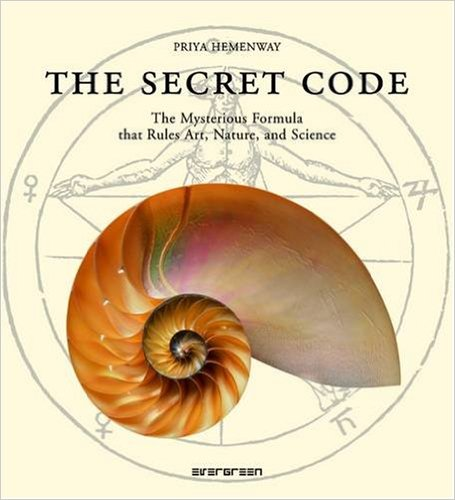 TheSecretCode_book