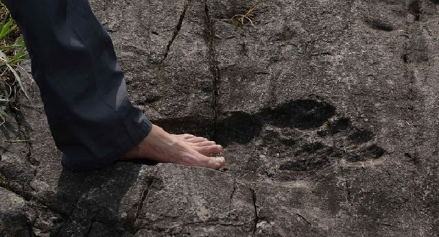 giant_footprint2