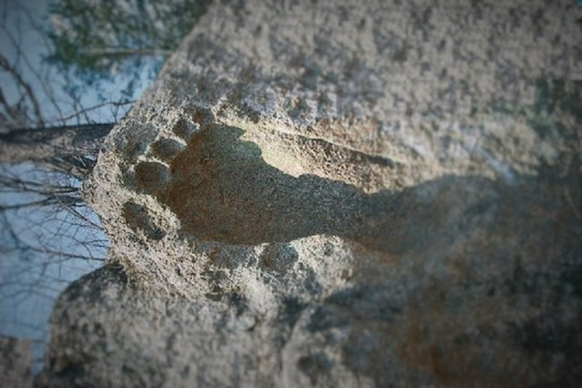 giants_footprint1