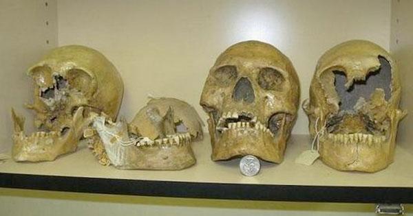 skull-giant