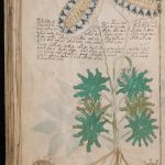 Voynich Manuscript MS408 Decoded